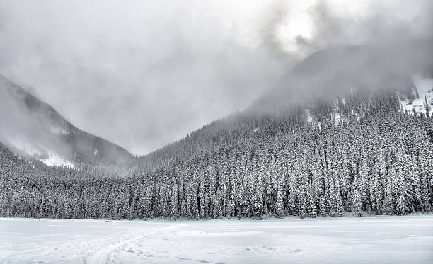 Overcast Snow Covered Mountain Trees stock photo