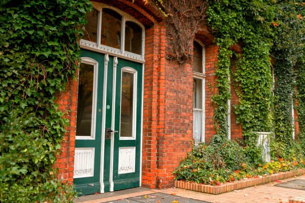 overgrown ancient building in lubeck, germany - ivy building imagens e fotografias de stock