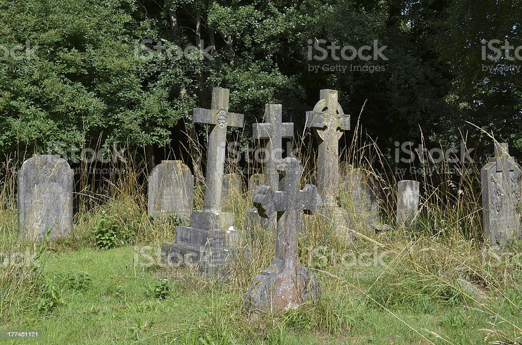 overgrown cemetery royalty-free stock photo