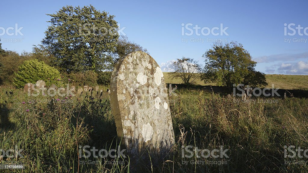 Overgrown Graveyard royalty-free stock photo