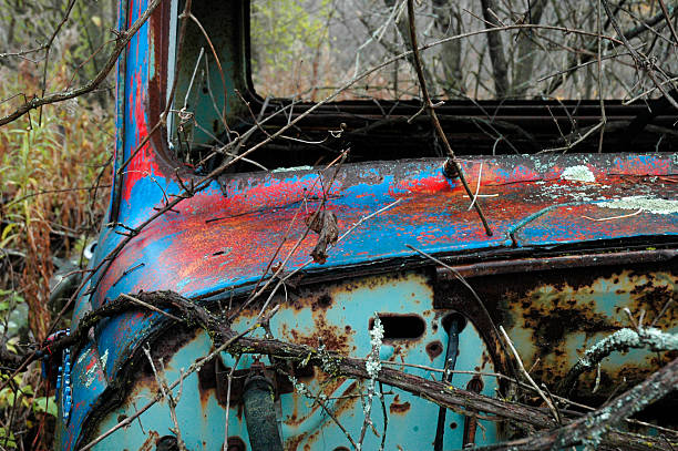 Overgrown Jalopy stock photo