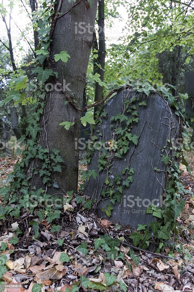 Overgrown Tombstone royalty-free stock photo