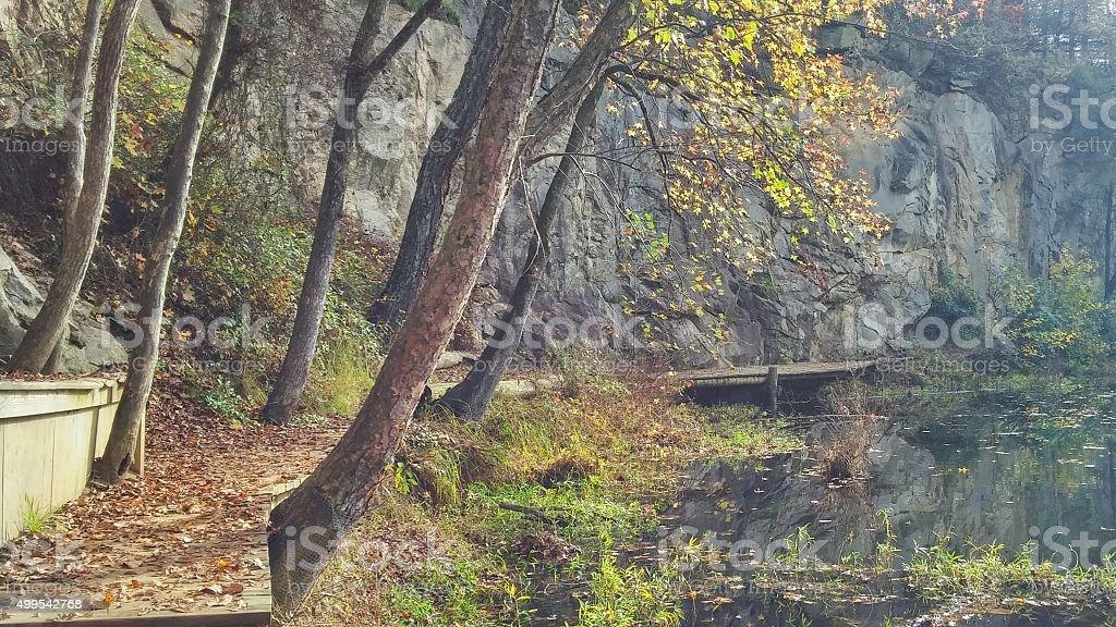 Overhanging Trees, Belle Isle Quarry Pond Hike, Richmond, Virginia stock photo