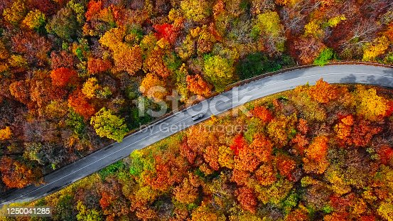 istock Overhead aerial view of winding mountain road inside colorful autumn forest 1250041285