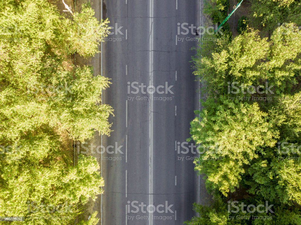 overhead empty city road between the trees royalty-free stock photo