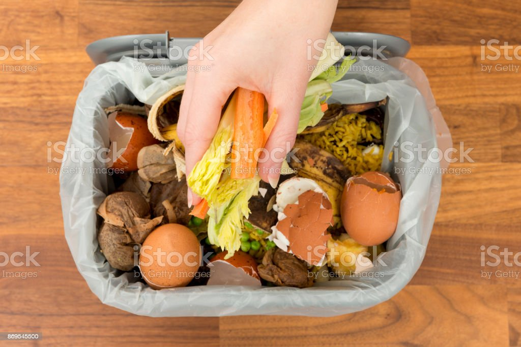 Overhead of Hand Placing Food Scraps into a Garbage Bin stock photo