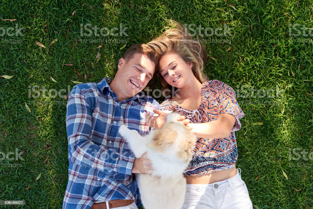 Overhead of happy smiling couple lying in the grass with their piuppy – zdjęcie