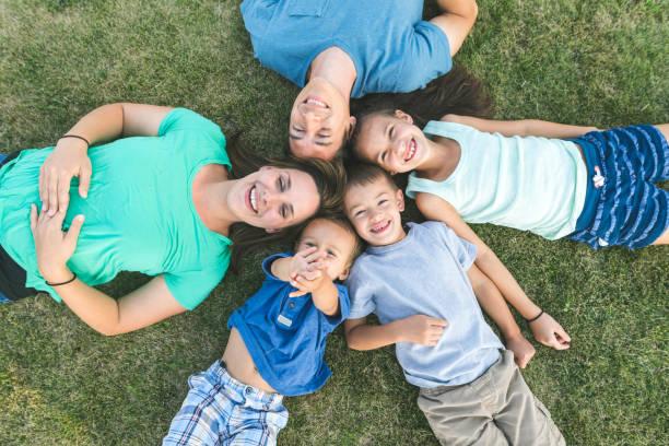 obenliegende porträt von mama, papa und drei kinder draußen auf der wiese - sommerfest kindergarten stock-fotos und bilder