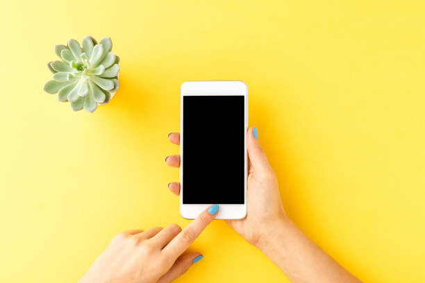 Overhead shot of female hands using smart phone with empty screen on yellow background with small flower. Top view stock photo