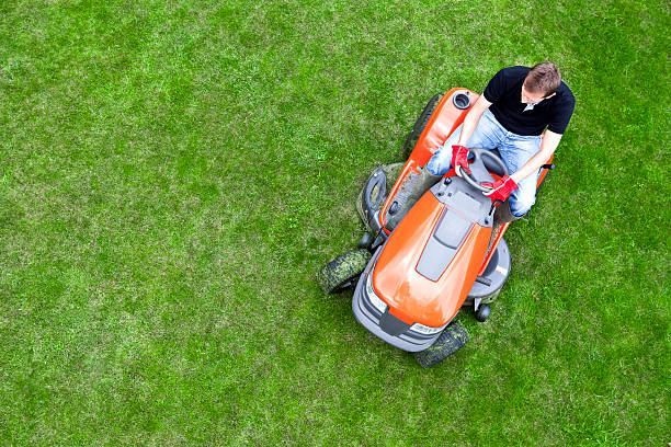 overhead shot of gardener mowing lawn with ride on mower - riding lawn mower stock photos and pictures