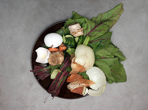 overhead view of compostable food waste pile - bioremediation stock photos and pictures