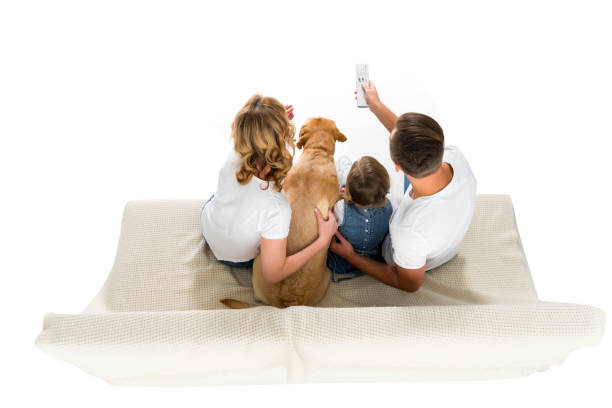 Overhead view of family with dog watching tv on sofa isolated on picture id925774078?b=1&k=6&m=925774078&s=612x612&w=0&h=ws snohgo9v  59qdennelmdp5omkc1qk3lurevu4vk=