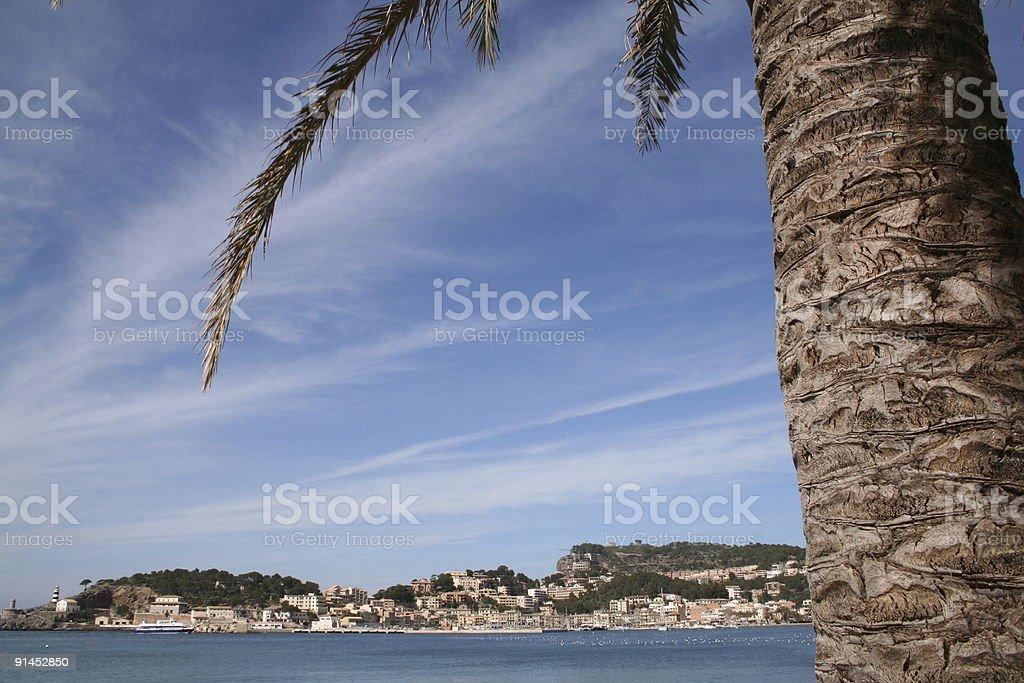 Com vista para o porto de Soller com palmeiras na frente - foto de acervo