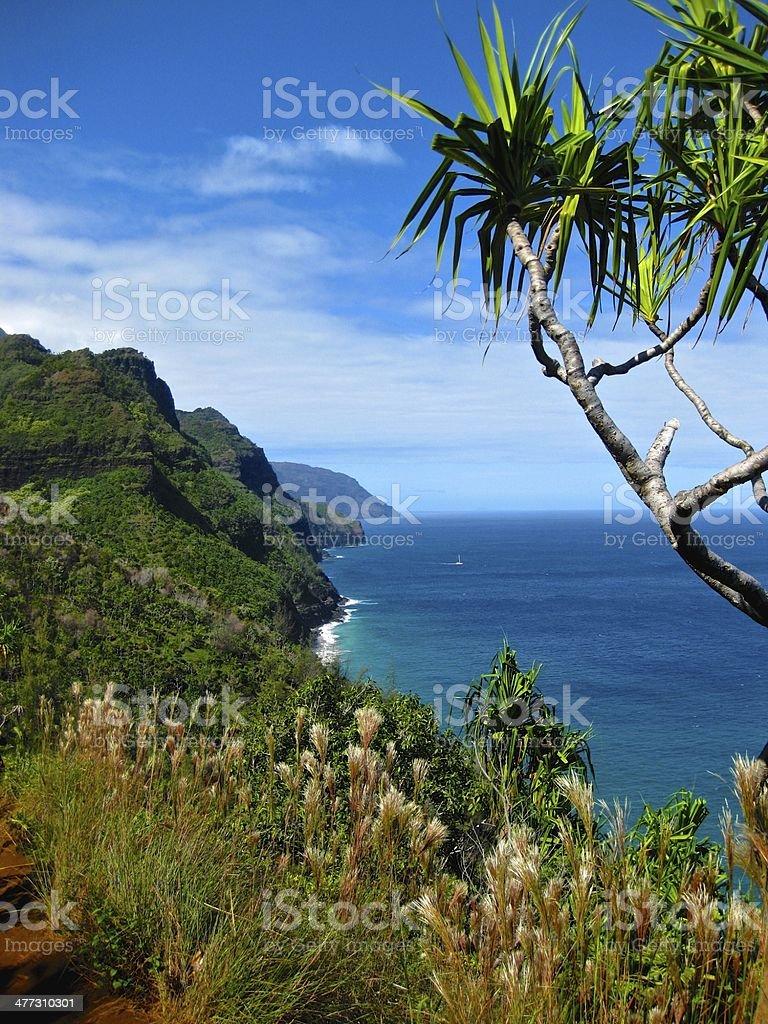 Overlooking the Na Pali Coastline stock photo