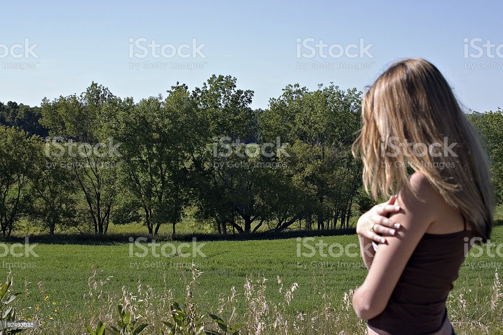 overlooking trees royalty-free stock photo