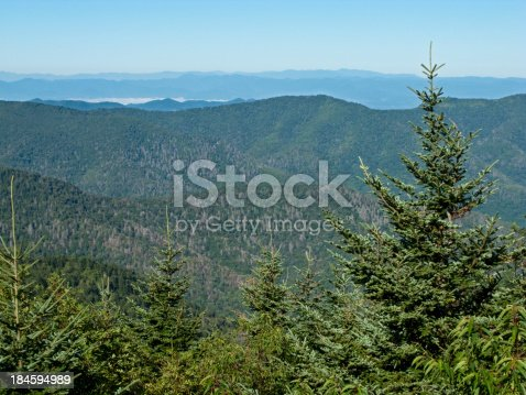 istock Overlooking Valley And Balsam Pine Trees At Mt. Mitchell,  NC 184594989
