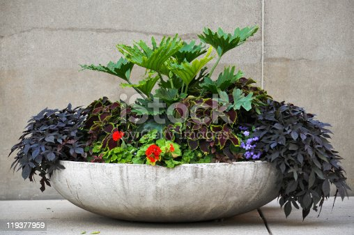 An overflowing modern arrangement of plants in a large modern concrete container.