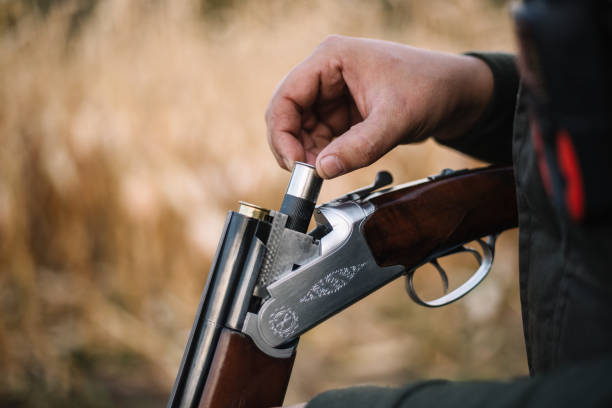 Over-under shotgun loading Hunter with hunting dog during a hunt bird hunting stock pictures, royalty-free photos & images