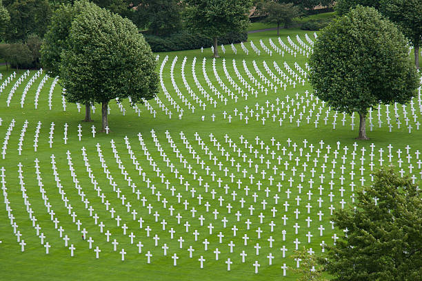 Overview American WWII Cemetery with trees stock photo
