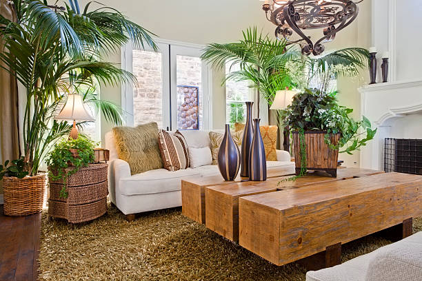 Overview of natural nature themed living room stock photo