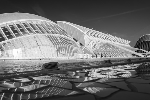 Overview of several buildings that are part of the City of Arts and Sciences, designed by architects Santiago Calatrava and Félix Candela. Black and white photograph taken in Valencia, Spain.