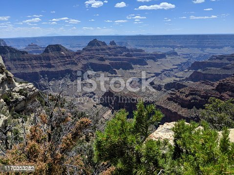 Overview of the Grand Canyon National Park Arizona as seen from the North Rim near Walhala Point Overlook