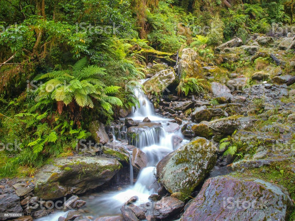 Overview of Waterfall in temperate New zealand rain forest stock photo