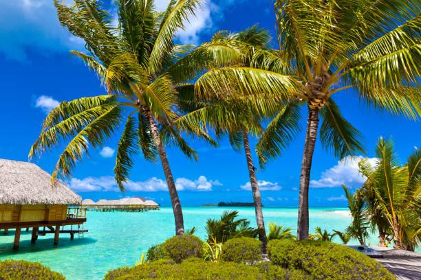 Overwater Bungalows in Tropical Island Paradise of Bora Bora, Tahiti stock photo