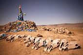 A roadside ovoo, shamanic shrine, in Mongolia, with some cow skulls displayed in a row.