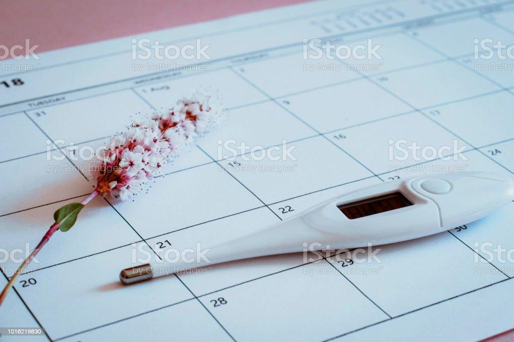 Calendario de la ovulación con flor y termómetro - foto de stock