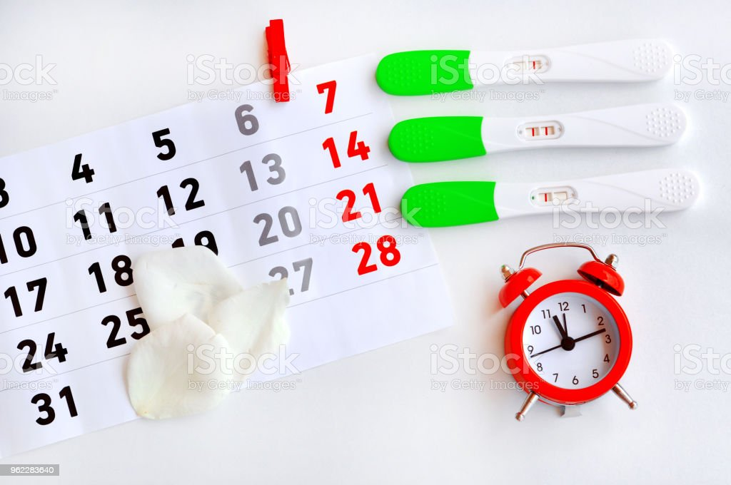 Ovulation Test Strip With Calendar And Red Clock The Tests