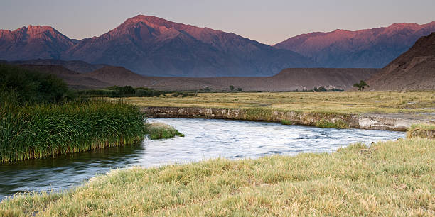 Owens River at Sunrise stock photo