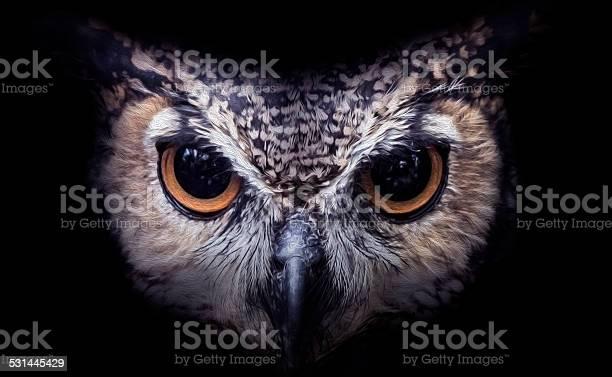 Owl art picture id531445429?b=1&k=6&m=531445429&s=612x612&h=rk0lvvsufeuu44abd5gevyl8ixpdqatev4zim5oi7z8=