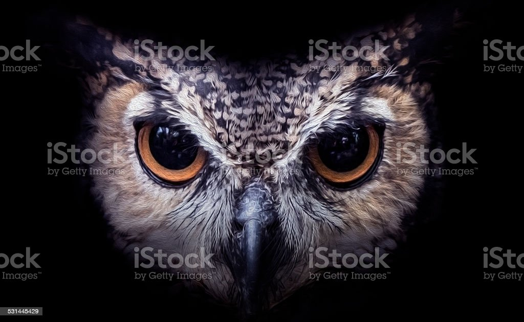 Owl art stock photo