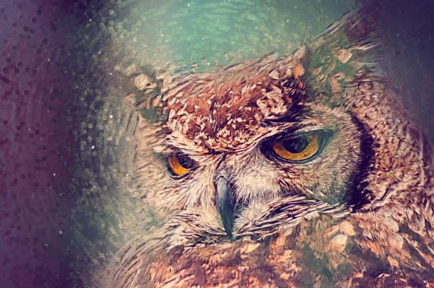 eule close-up portrait. digitale zeichnung - eule zeichnung stock-fotos und bilder