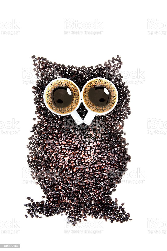 owl coffee royalty-free stock photo