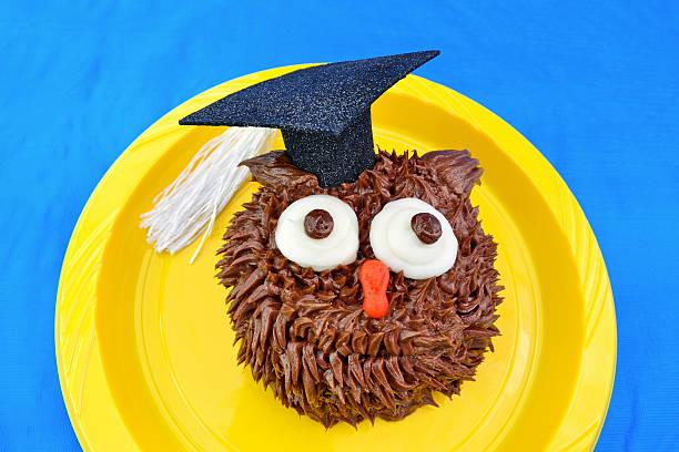 Owl Cupcake for Graduation stock photo