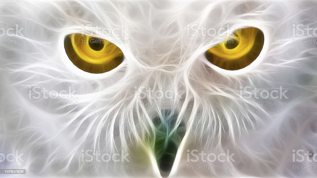Owl frctal royalty-free stock photo