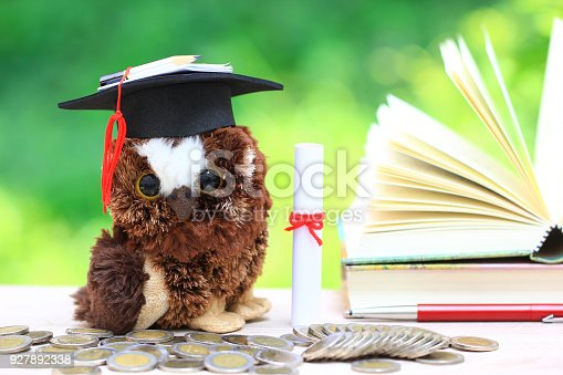 istock Owl in graduation hat with a books and stack of coins money on natural green background, Saving money for education concept 927892338