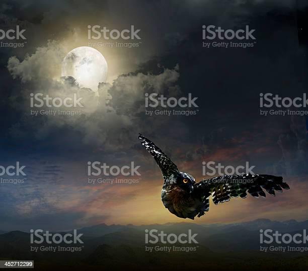 Owl in the night sky picture id452712299?b=1&k=6&m=452712299&s=612x612&h=28hfjwohmtljv4hyqknohto2lp1b nvaggyv9ztze6y=