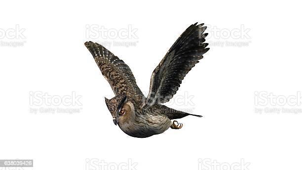 Owl isolated on white background picture id638039426?b=1&k=6&m=638039426&s=612x612&h=p8b nvxtu 0jjaxi6m6do ad17fjsuzcaxktoiqfhb8=