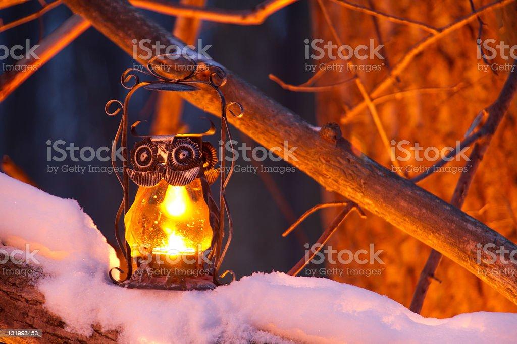 Owl Lantern soft glow royalty-free stock photo