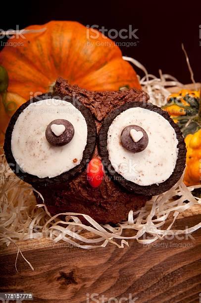 Owl muffins picture id178157778?b=1&k=6&m=178157778&s=612x612&h=x7t zmwnpopufq3ecsv1egaufubxvwszwh7lvbor8da=