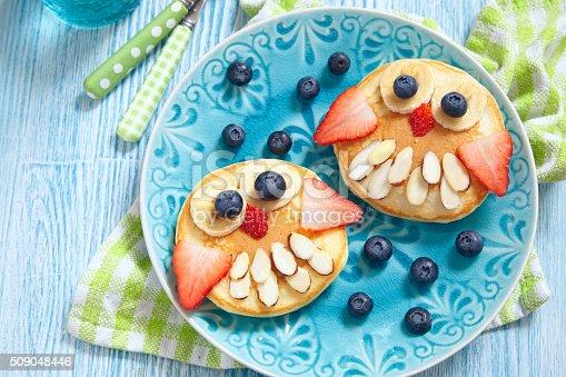 istock Owl pancakes for kids breakfast 509048446