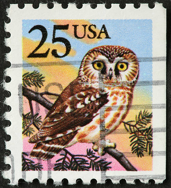 Royalty Free Owl Postage Stamps Pictures Images And Stock Photos