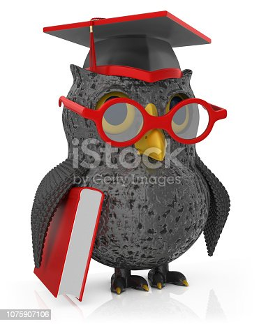 3d render. Black owl isolated on white background.