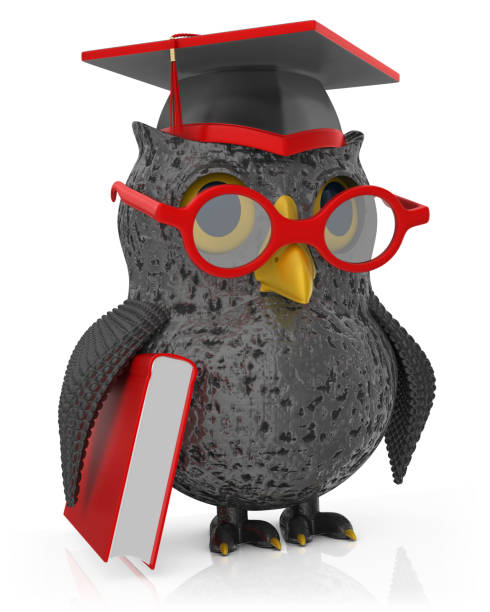 owl student - cartoon stock photos and pictures