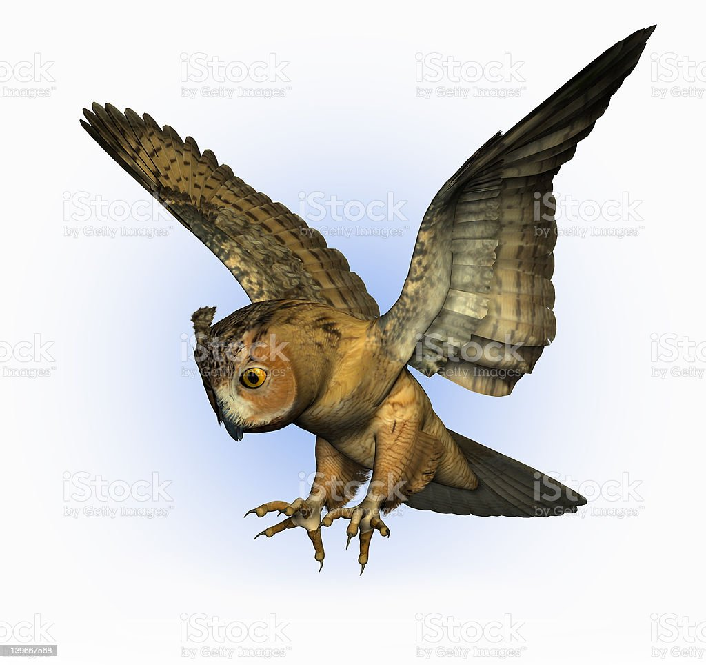 Owl Swooping Down 2 - with clipping path stock photo