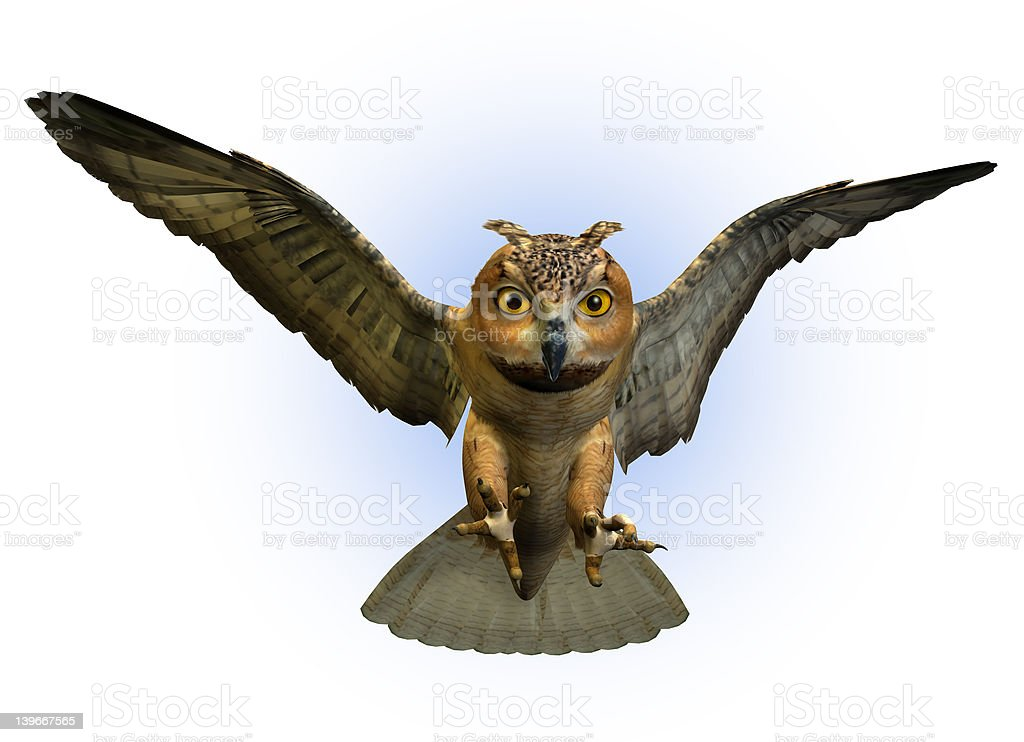 Owl Swooping Down - with clipping path stock photo
