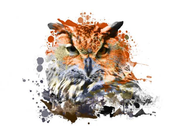Owl with abstract paint on white background picture id925020364?b=1&k=6&m=925020364&s=612x612&w=0&h=xa9kuesathasi8qtyb8weuffwlobsjqtdydzfmi6m5u=